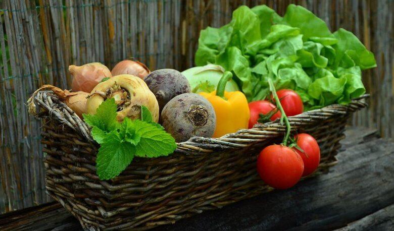 vegetables 7521531280 815x458