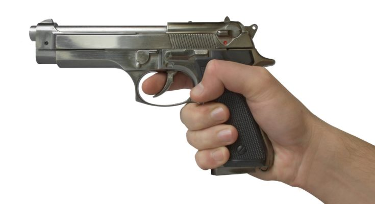 pistolj 735x400