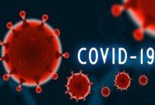 kovid 19 covid 19 korona virus 18