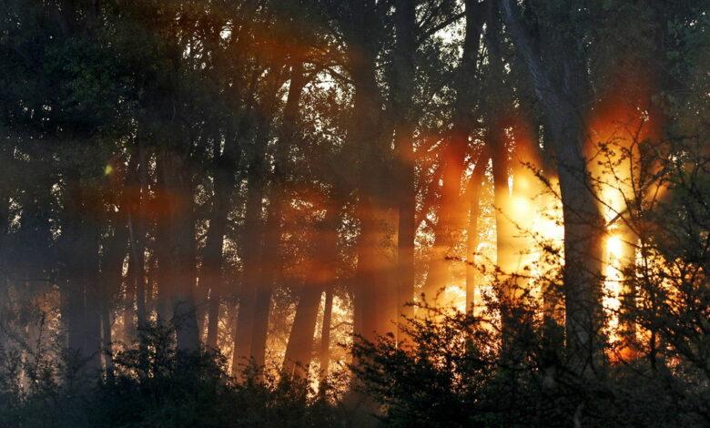 zasticena podrucja gornje podunavlje prognoza vreme priroda sunce zalazak 37