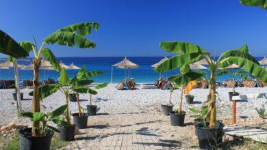 beach 4408437 1280