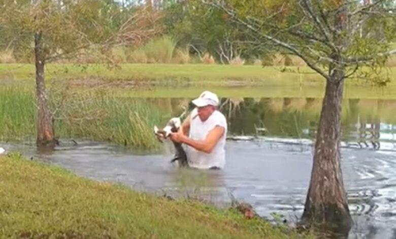 florda covjek pisc aligator snimak prtscr